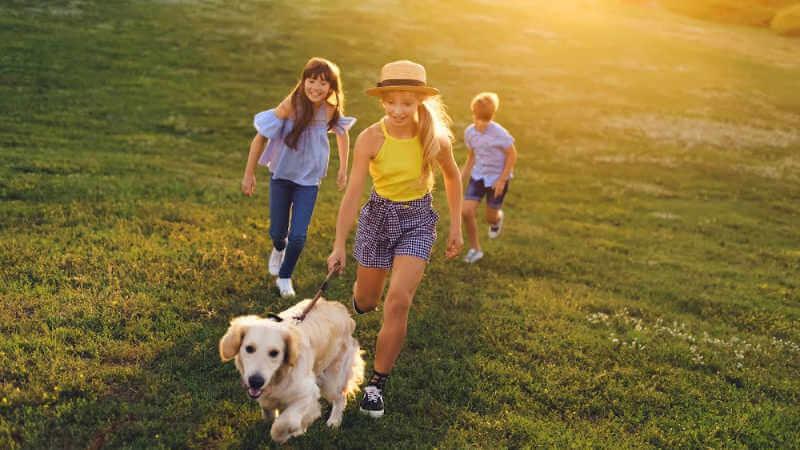 dog-friendly-park-lake-macquarie-kids-dog