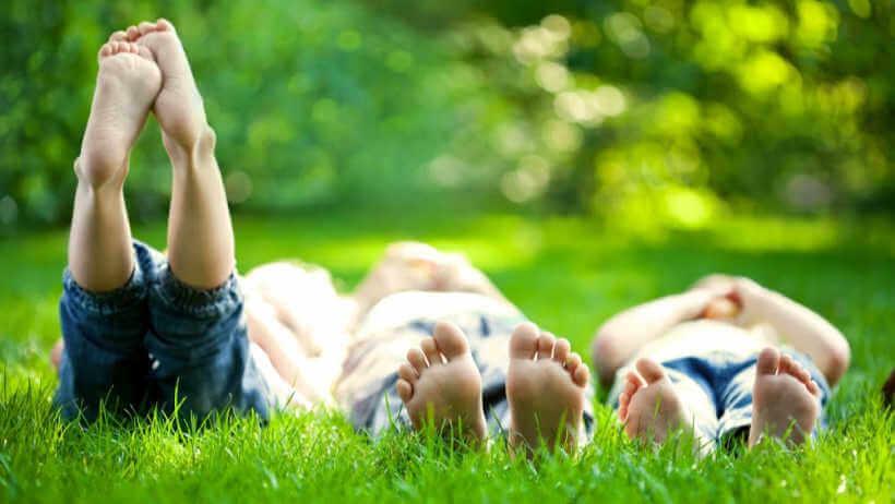 picnic-spots-lake-macquarie-grass