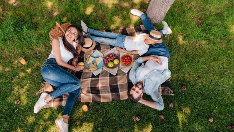 picnic-spots-lake-macquarie-laying-grass