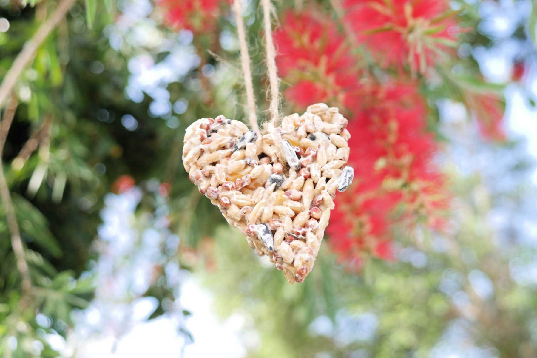 birdseed-ornaments-recipe