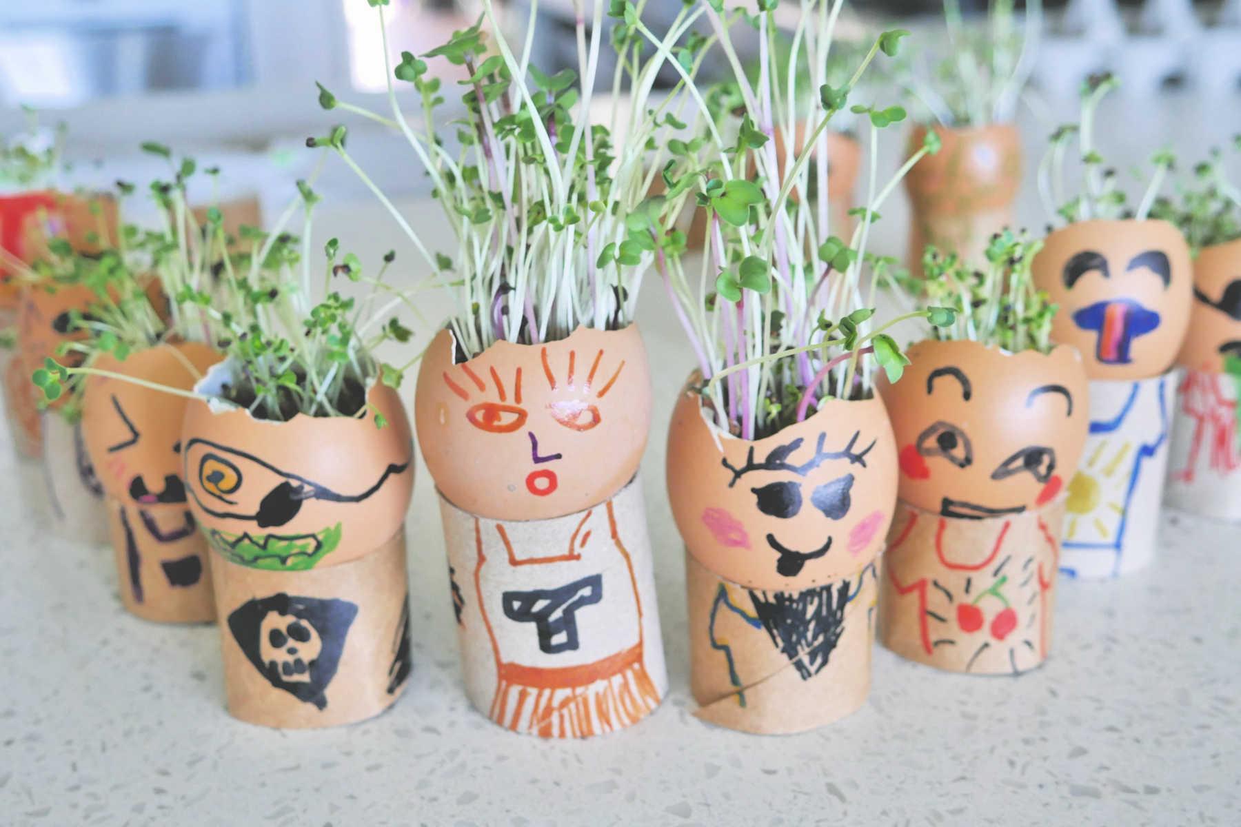 grow-eggheads