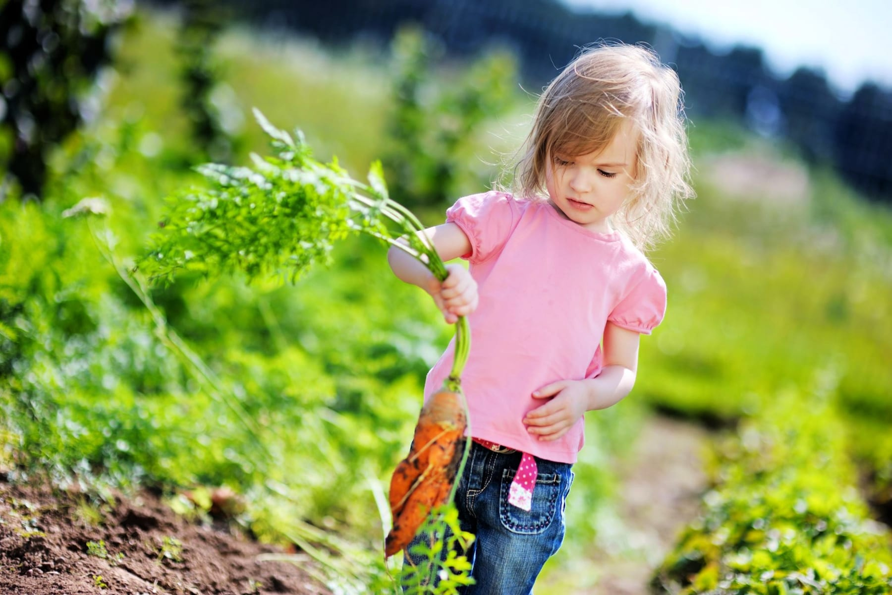 kids-veggie-patch