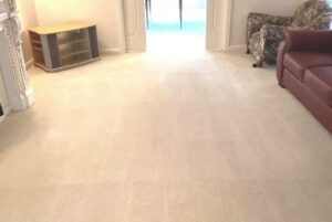 g-w-carpet-upholstery-cleaning-gallery6
