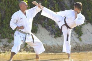 pollets-martial-arts-gallery4