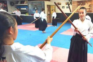 pollets-martial-arts-gallery5