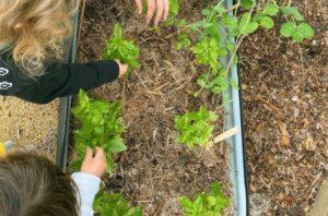sustainable-play-preschool-gallery4