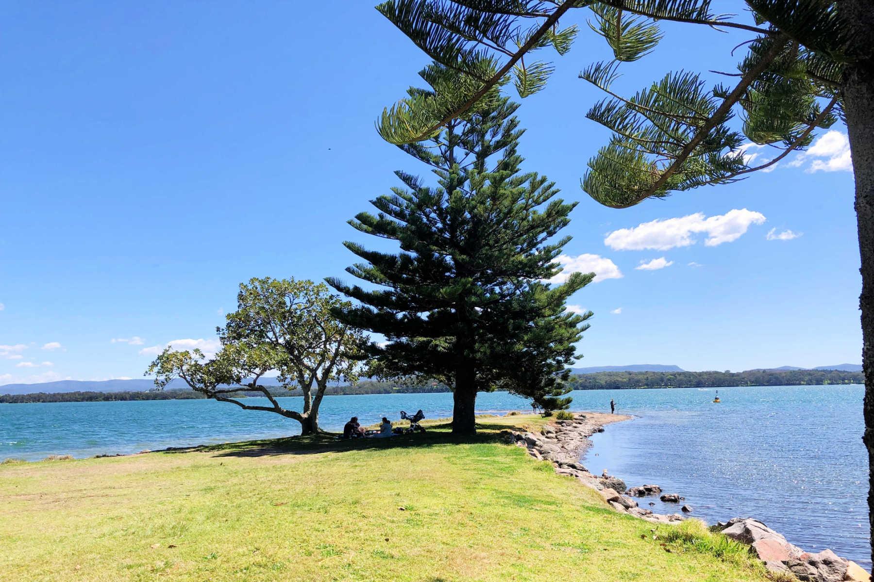 shingle-splitters-point-lake-macquarie-main